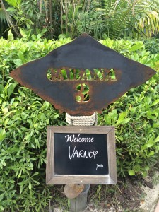 Sara's Snippets - March 12, 2015 - Cabana at Castaway Cay